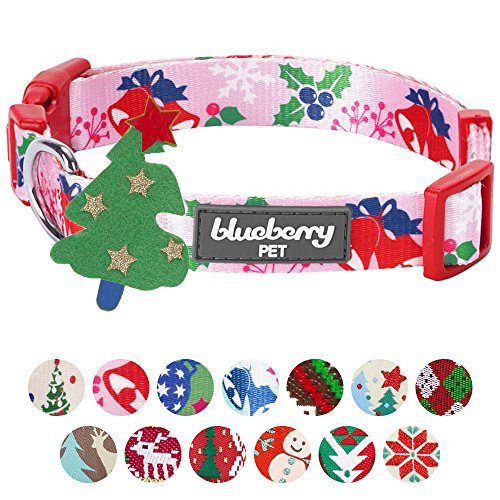 Blueberry Pet 14 Patterns Christmas Holiday Excellence Secret Garden Baby Pink Designer Dog Collar, Small, Neck 12''-16'', Adjustable Collars for Dogs by Blueberry Pet