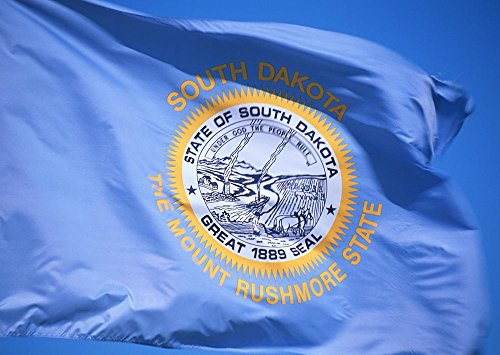 Allied Flag Outdoor Nylon State Flag, South Dakota, 4-Foot by 6-Foot For Sale