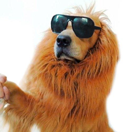 Large Pet Costume Lion Mane Wig for Dog Christmas Halloween Clothes  Festival Fancy Dress up Amazon.co.uk Pet Supplies