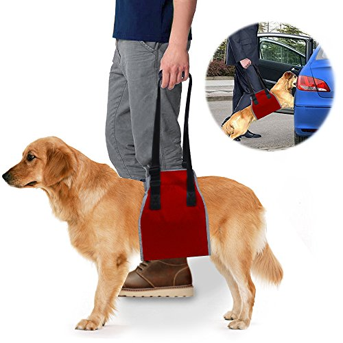 roadwi Dog Lift Support & Rehabilitation Harness, Oxford and Nylon Pad with Reflective Stitching by roadwi