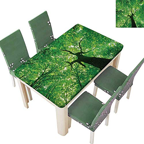 Printsonne Solid Tablecloth Body of Tree Evergreen in The Nature Majestic Habitat Symbol Light Table Cover 52 x 108 Inch