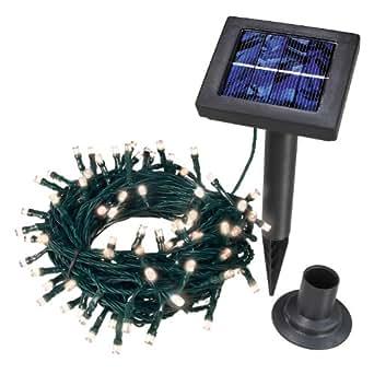 Esotec 102102 - Guirnalda solar con 100 luces LED de color blanco
