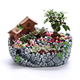 lovely master kitchen plan XINJINGHE Creative Plant DIY Container Jar Mini Fairy Garden Flower Plant and Sweet House Decoration, Holiday Decoration, Interior Decoration and Gifts (excluding Plants),Gray
