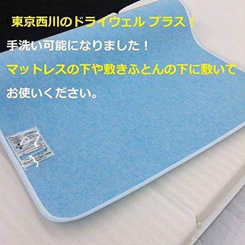 東京西川 ドライウェルプラス 2本セット 日本製 (セミダブル2枚セット) B01AAATGCW  セミダブル2枚セット