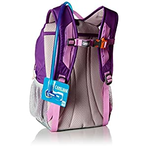 Camelbak Products 2016 Scout Hydration Backpack, Pansy/African Violet, 50-Ounce