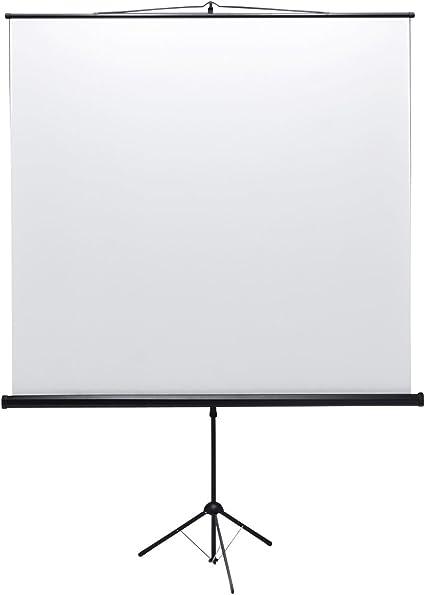 Amazon.com: Sanwa Fuente prs-s90 pantalla con proyector ...