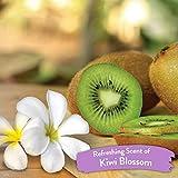 TropiClean Kiwi Blossom Deodorizing Spray for