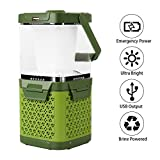 Saltwater Lantern Brine Powered Camping Lamp LED Flashlights USB Output Survival Kit for Emergency, Hurricane, Outage (Green)