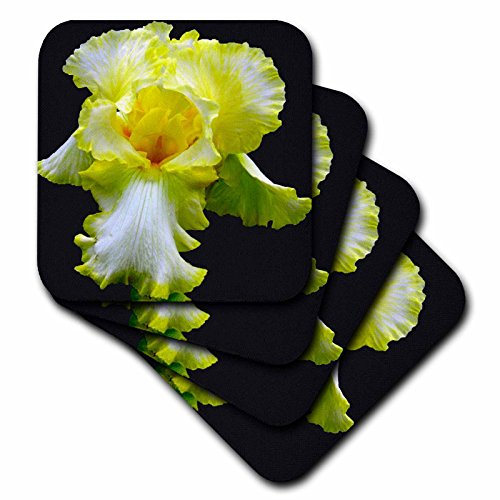 3dRose cst_17243_3 Yellow Iris-Ceramic Tile Coasters, Set of 4