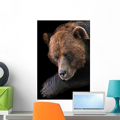 Brown Bear Brookfield Zoo Wall Mural By Wallmonkeys Peel And Stick Graphic  24 In H X 16 In W  Wm43443