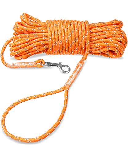 Joytale Schleppleine für Hunde, 5m / 10m / 15m Kein Verheddern Ausbildungsleine mit Handschlaufe für Welpen und Kleine Hunde