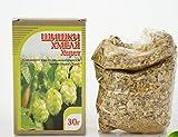 Hops Flowers ( Lupulus Hop Cones ) 100% Natural Non GMO 30g