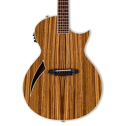 ESP LTD TL-6 Thinline Acoustic Electric Guitar, Zebrawood