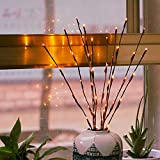 Branch Lights - Led Branches Battery Powered Decorative Lights Willow Twig Lighted Branch for Home Decoration Warm White - 20 Inches 20 LED Lights[2 Pack]