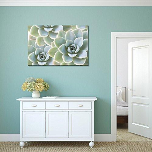 Print Succulent Plants on Retro Style Background