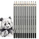 Drawing Pencils Set, 24 Piece, Sketching Pencils 14B, 12B, 10B, 8B, 6B, 4B, 3B, 2B, B, HB, F, H - 9H Graphite Pencils for Beginners Artist - 2H Pencil