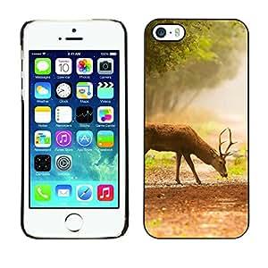Caucho caso de Shell duro de la cubierta de accesorios de protección BY RAYDREAMMM - iPhone 5 / 5S - Comer ciervos