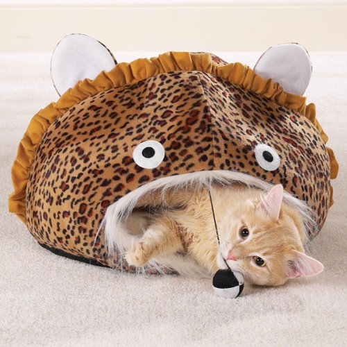 - Meow Town Cat Cave