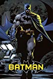 Batman Poster 24 x 36in Picture