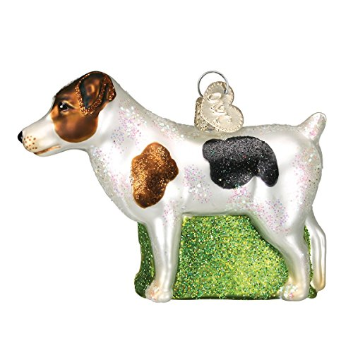 Old World Christmas Glass Blown Ornament with S-Hook and Gift Box, Dog Collection (Jack Russell Terrier)