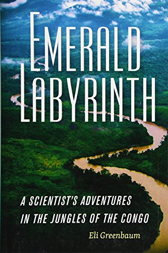 Emerald Labyrinth: A Scientist