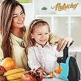 Nutrichef NCIM30 Electric Maker Fruit Sorbet