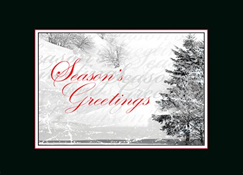 Holiday Greeting Cards - H1068. Business Greeting Card Featuring a Subtle Winter Scene with Graphic Elements. Box Set Has 25 Greeting Cards and 26 White with Red Foil Lined Envelopes. (Best Business Christmas Cards)