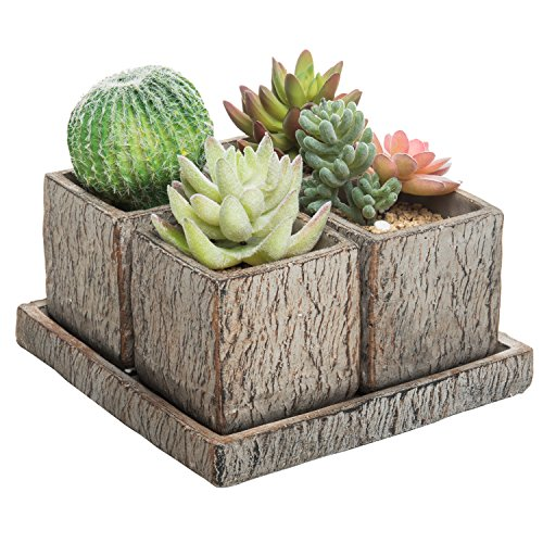 Table Desert Clay - MyGift Set of 4 Rustic Clay 3-Inch Succulent Planter Pots with Removable Drainage Tray