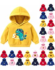Mercatoo Toddler Kids Hoodie Sweatshirt Cartoon Dinosaur Multi-Styles Print Fleece Autumn Winter Pullover for 2-6 Years