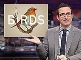 Trending Clip: John Oliver on Birds