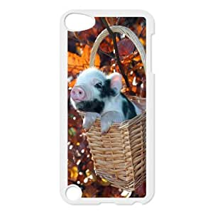 C-QUE Customized Print Cute Pig Pattern Hard Case for iPod Touch 5