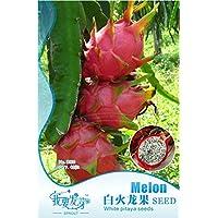 1 Pack de originales, 40 semillas / paquete, Pitaya blanca en el interior roja fuera, dulce fruta del dragón, Pitaya…
