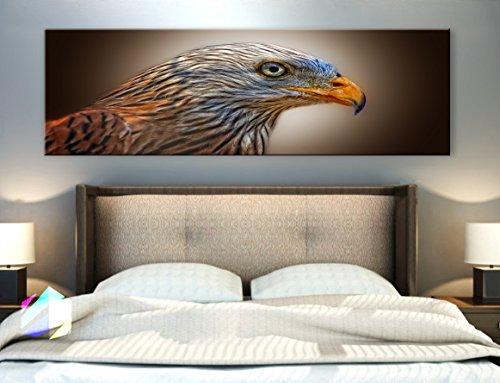 (Original by BoxColors Single panel 3 Size Options Art Canvas Print animal avian bird of prey eagle falcon predator pride raptor wild wildlife wing Wall Home Office decor (framed 1.5