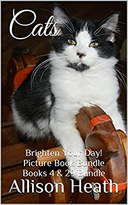 Cats: 2-in-1 Picture Book Bundle (Books 4 & 29 Brighten Your Day! Series Bundle)
