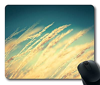 Custom Gaming Mouse Pad with Rice Field Nature Non-Slip Neoprene Rubber Standard Size 9 Inch(220mm) X 7 Inch(180mm) X 1/8 Inch(3mm) Desktop Mousepad Laptop Mousepads Comfortable Computer Mouse Mat