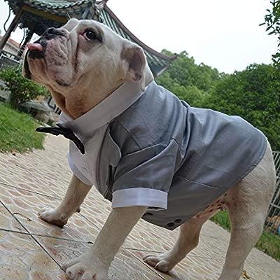 longlongpet Disfraz de Perro Traje Formal Esmoquin con Pajarita ...