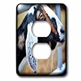 3dRose WhiteOaks Photography and Artwork - Goats - Billy Goat Tee is a photo of a goats profile showing off its goat tee - Light Switch Covers - 2 plug outlet cover (lsp_265342_6)