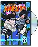 Naruto: Vol. 29