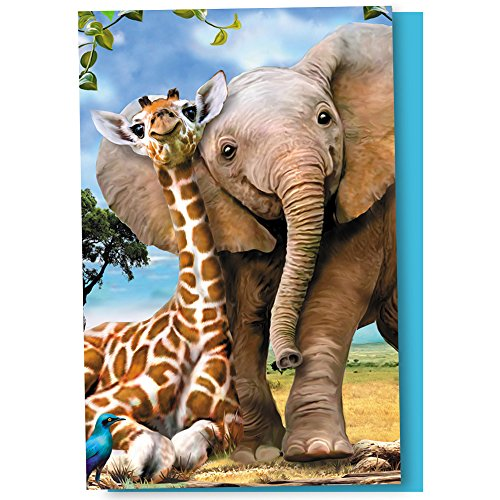 Tree-Free Greetings EcoNotes 12 Count Savannah Friends All Occasion Notecard Set with Envelopes, 4 x 6 Inches (FS66809)