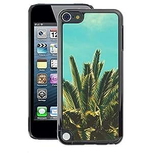 A-type Arte & diseño plástico duro Fundas Cover Cubre Hard Case Cover para Apple iPod Touch 5 (Sun Vignette Teal Summer Palm Tree Miami)