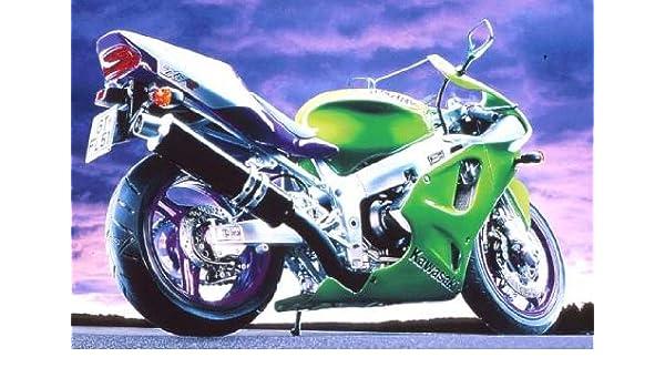 Revell 07905 - Kawasaki Ninja ZX-7 RR Verde, Partes 365 ...