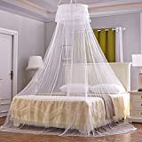 GZQ Bed Mosquito Net Princess Hanging Bed Canopy Netting Curtain Round Dome Insect Bug Protection for Home or Holidays (White)