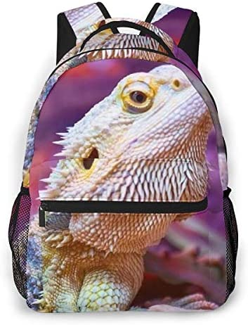 Lightweight Polyester Big Capacity Laptop Backpack Daypack School Daypack