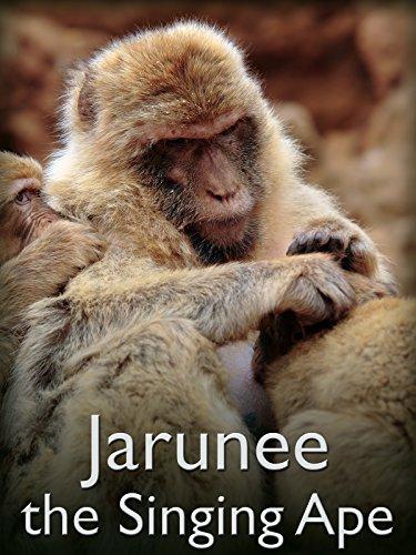 Jarunee - the Singing Ape