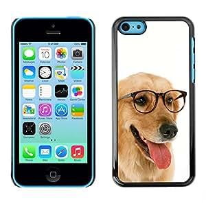 PC/Aluminum Funda Carcasa protectora para Apple Iphone 5C Labrador Retriever Golden Glasses Dog / JUSTGO PHONE PROTECTOR