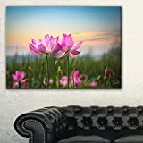 Design Art PT9674-40-20 Blooming Lotus Flowers at Sunset Floral Photo Canvas Print,Pink,40x20''