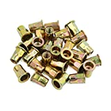 uxcell® 30 Pcs M8 Bronze Tone Carbon Steel Thread Half Hexagonal Rivet Nut Nutserts