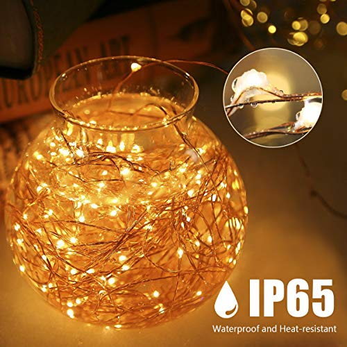 HSicily 33ft 100 LED Fairy Lights Plug in with Remote Control Timer, 8 Modes USB String Light with Adapter,Warm White LED Twinkle Lights for Christmas Thanksgiving Bedroom Indoor Decoration