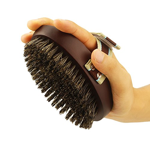 Petfamily Dog Grooming Bristle Brush For Short And Long