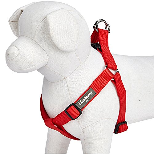 Blueberry Pet 19 Colors Step-in Classic Dog Harness, Chest Girth 20 - 26, Rouge Red, Medium, Adjustable Harnesses for Dogs